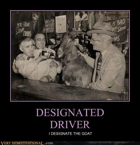 DESIGNATED DRIVER I DESIGNATE THE GOAT