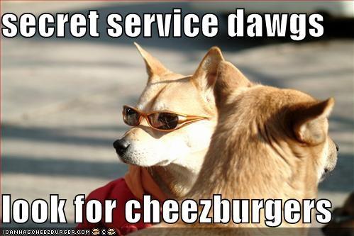 Cheezburger Image 638517504