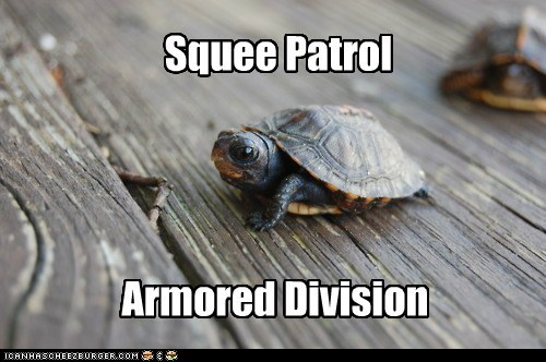 armored baby cute patrol squee turtle