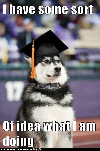 captions,dogs,graduate,graduation ceremony,huskie,i have,uw