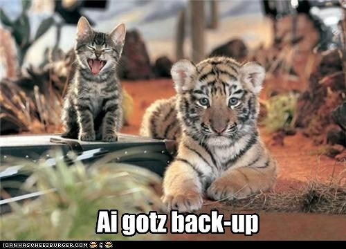 baby animals,back up,captions,fierce,kitten,meow,roar,tiger