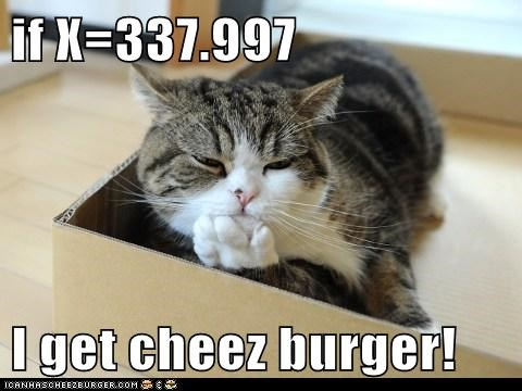 Cheezburger Image 6387708672