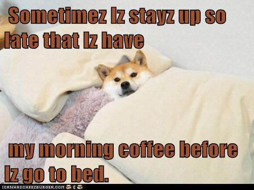 Sometimez Iz Stayz Up So Late That Iz Have My Morning Coffee