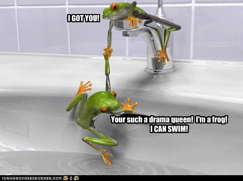 bathtub,catch,fine,frogs,got you,help,saved,swim