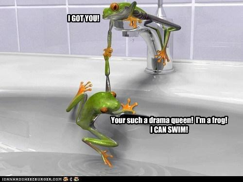 bathtub catch fine frogs got you help saved swim - 6388415232