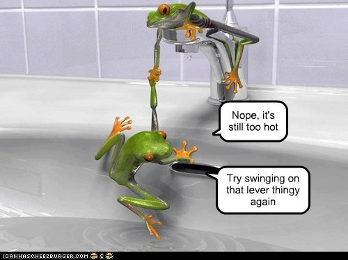 bathtub,frogs,helping,teamwork,too hot,water