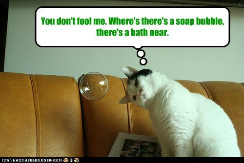 You don't fool me. Where's there's a soap bubble, there's a bath near.