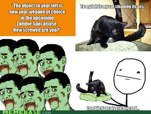 apocalypse,cat,cleaning,Rage Comics,zombie