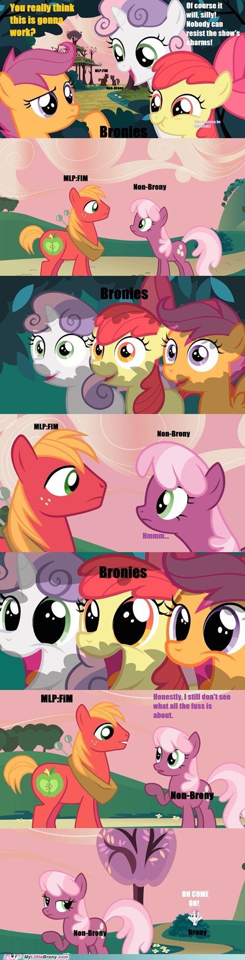 almost Bronies comics non-brony relationship - 6389262592