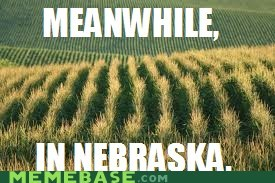 Meanwhile Memes nebraska wheat - 6389363456