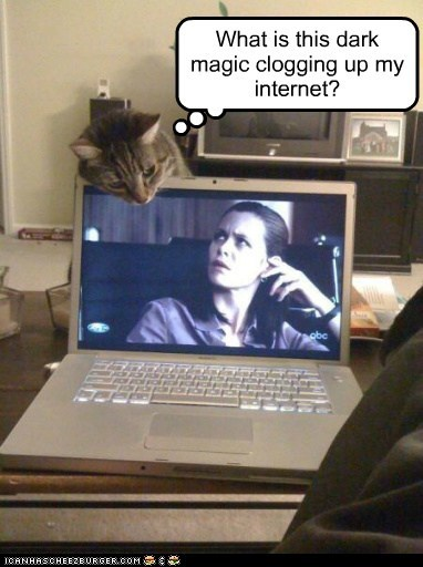 clog internet lolcat magic sorcery TV watch