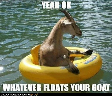best of the week,captions,expressions,floating,goats,idioms,literalism,puns,rafts,whatever floats your goat