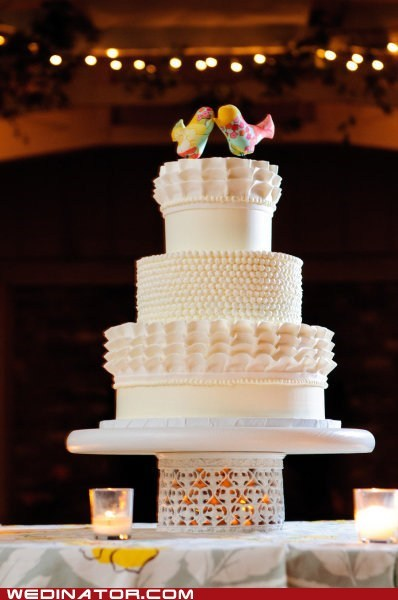 birds cakes funny wedding photos just pretty wedding cakes - 6390565632