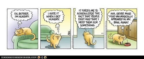 annoyed,bowl,Cats,comic,comics,food,food bowl,hunger,hungry