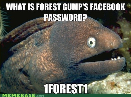 Bad Joke Eel facebook Forrest Gump jokes run forrest run - 6391035136
