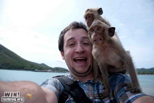 animals candid photo monkey vacation wincation - 6391198720