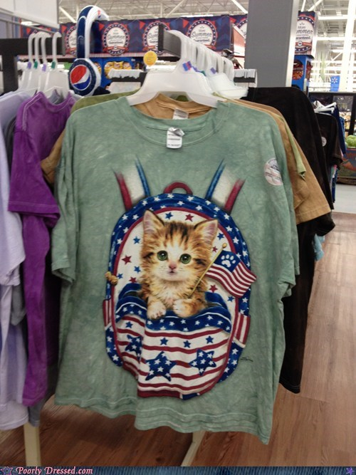 america Cats fourth of july independence day merica - 6391538432