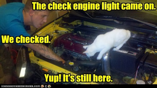 The check engine light came on. We checked. Yup! It's still here.