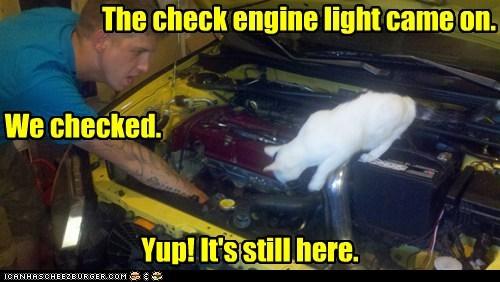 car check engine mechanic - 6391726592