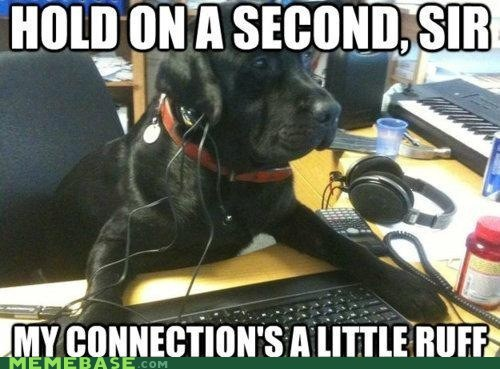 cookies,dogs,Memes,puns,ruff,tech support