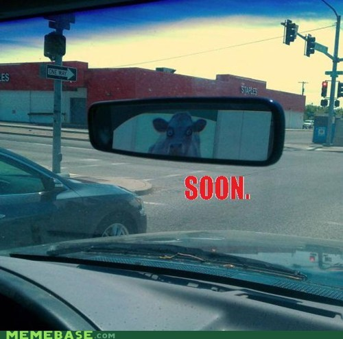 car cow mirror moon SOON - 6392433408