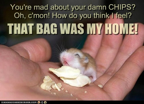 You're mad about your damn CHIPS? Oh, c'mon! How do you think I feel? THAT BAG WAS MY HOME!