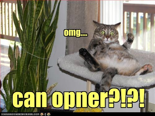 can opener,food,hear,listen,noms,omg