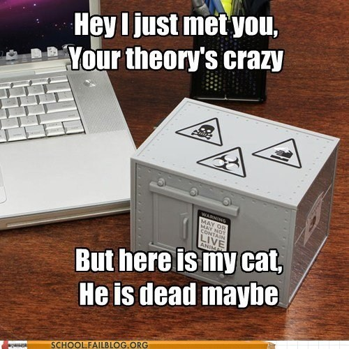 call me maybe,quantum mechanics 303,schrodingers-cat