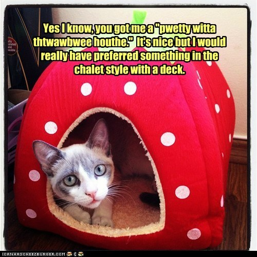 cat house chalet cozy fruit house strawberry - 6393387520