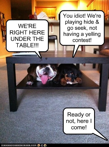 Ready or not, here I come! WE'RE RIGHT HERE UNDER THE TABLE!!! You idiot! We're playing hide & go seek, not having a yelling contest!