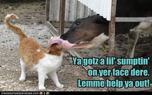 Ya gotz a lil' sumptin' on yer face dere. Lemme help ya out!
