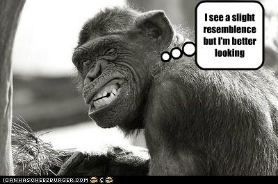 better looking,chimpanzee,evolution,handsome,resemblance,smile