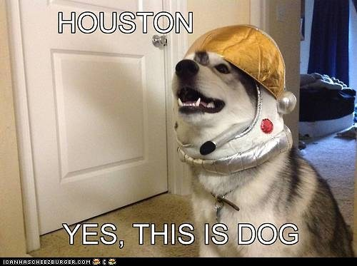 astronauts,dogs,hello yes this is dog,houston,houston we have a problem,space