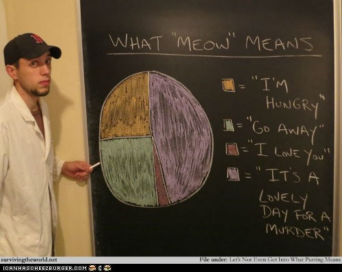 best of the week,Cats,graphs,meanings,meow,meowing,murder,pie charts