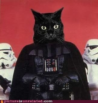 best of week Cats darth vader star wars - 6394312704