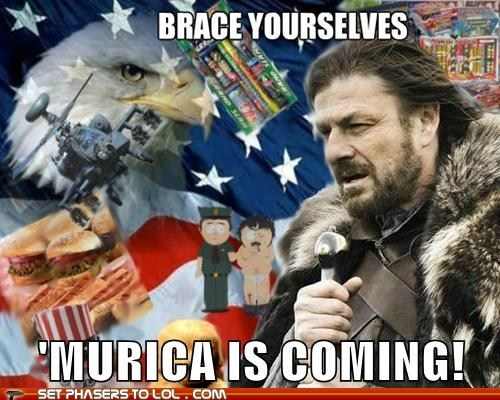 4th of july,brace yourselves,eagle,Eddard Stark,Game of Thrones,murica,patriotic,randy marsh,sean bean,Winter Is Coming