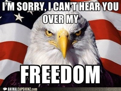 america American Flag best of the week birds captions eagle eagles freedom Hall of Fame holidays stern - 6394563584