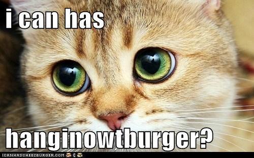 Cheezburger Image 6395313920