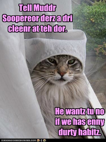 catholic cleaner habit lolcat mother superior nun pun - 6396389888