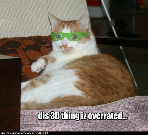3d,3D Movies,glasses,lolcat,Movie,overrated,watch