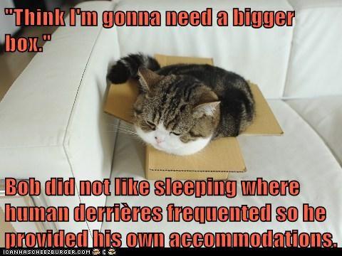Cheezburger Image 6397144064