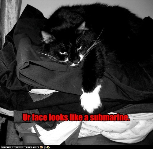 face insult lolcat names submarine - 6398333184
