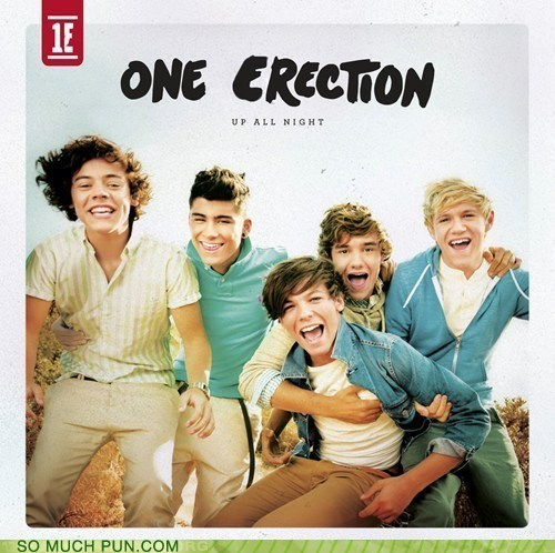 double meaning erection lolwut one direction song title up all night - 6398696960