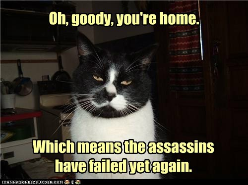 Oh, goody, you're home. Which means the assassins have failed yet again.