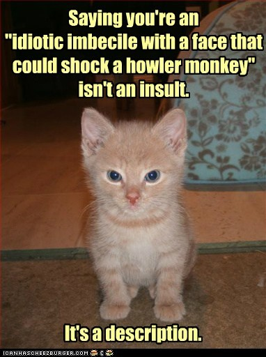 """Saying you're an """"idiotic imbecile with a face that could shock a howler monkey"""" isn't an insult. It's a description."""