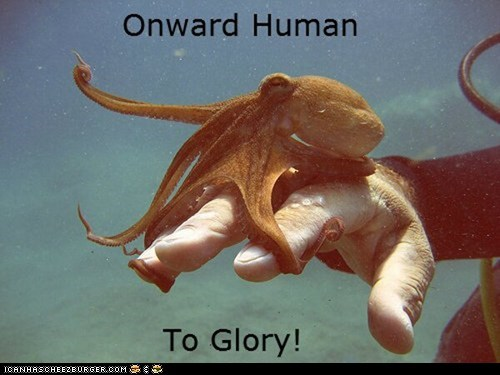 captions glory leaders leading octopus onward water - 6399582208