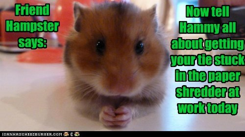 Now tell Hammy all about getting your tie stuck in the paper shredder at work today Friend Hampster says: