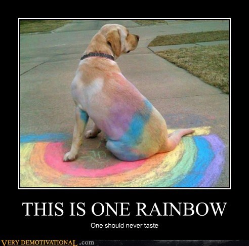 chalk dogs hilarious rainbow - 6399780608