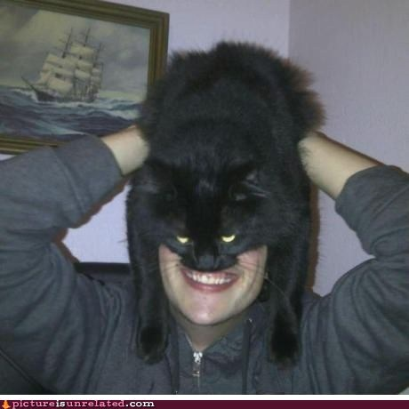 cat,man,pets,wtf