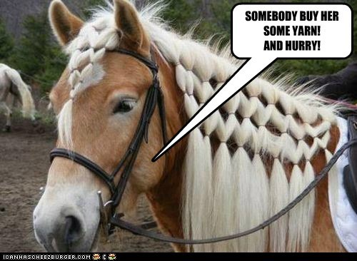 horse,hurry,knitting,ponytails,style,yarn